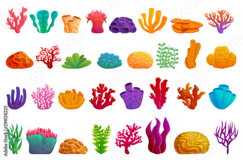 Fotografija Coral icons set. Cartoon set of coral vector icons for web design