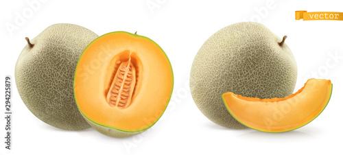 Canvas Print Sweet melon, cantaloupe. 3d realistic vector icon