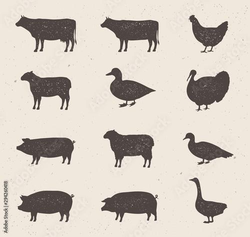 Carta da parati Animals silhouettes icons set