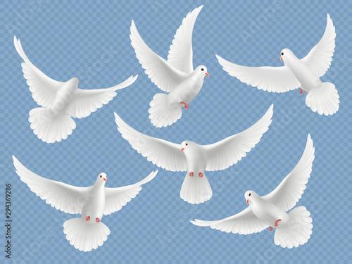 Canvas Realistic doves