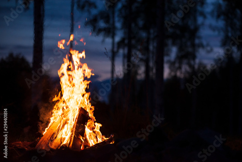 Foto Burning campfire on a dark night in a forest