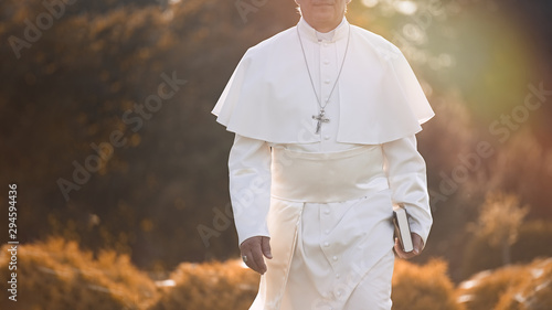 Fotografia Pope walks at the end of the day in the garden