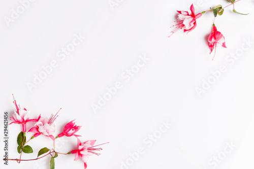 Fotografija Festive fuchsia flower composition on the white background