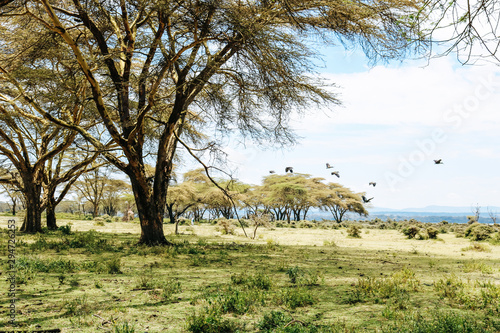 Stampa su Tela Beautiful landscape of Crescent Island Game Sanctuary (where the movie Out of Africa was filmed) at Lake Naivasha in Kenya, Africa