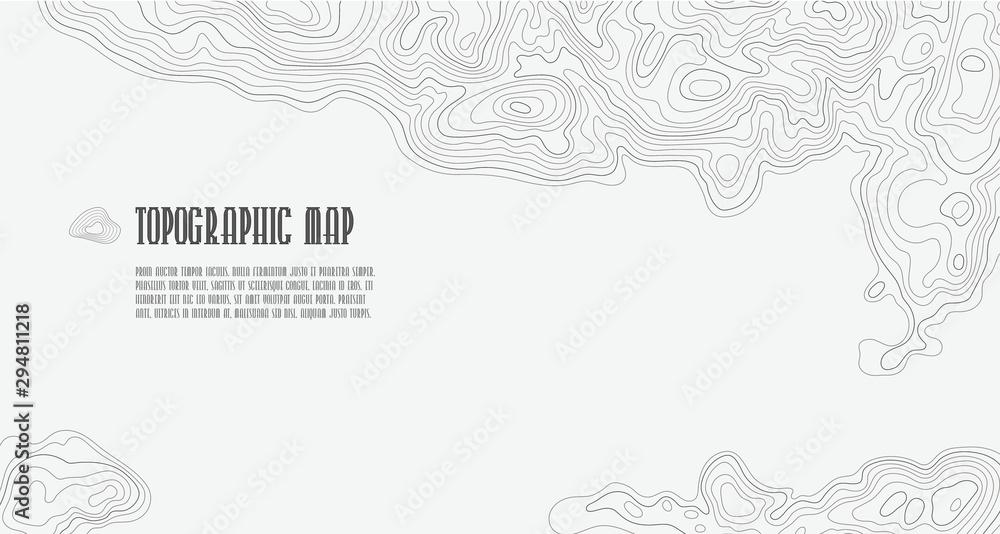 Tło mapy konturowej linii topograficznej, mapa siatki geograficznej z miejscem na kopię <span>plik: #294811218   autor: biancaoddi</span>