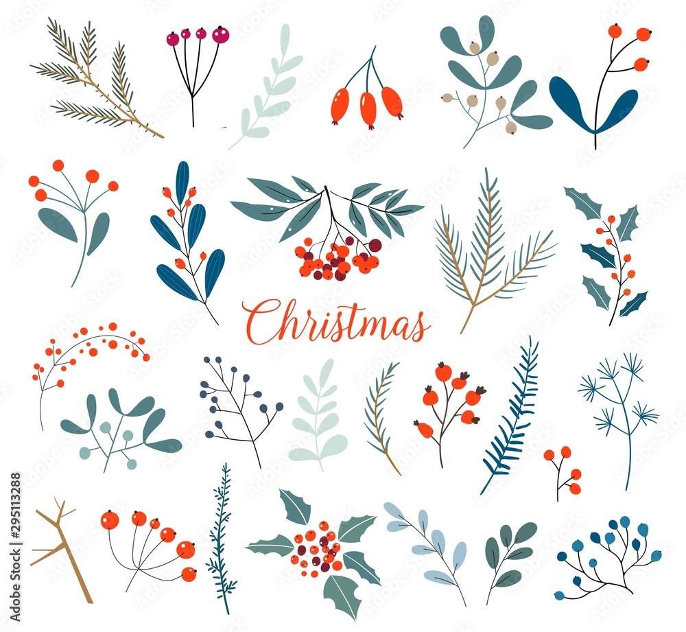 Świąteczna kolekcja kwiatowa z zimowymi dekoracyjnymi roślinami i kwiatami. Ładna ręcznie rysowane w stylu skandynawskim. Ilustracja zima jagody i boże narodzenie gałąź. <span>plik: #295113288   autor: nadia1992</span>