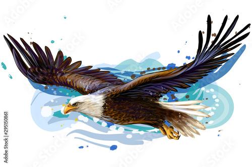 Soaring bald eagle Fotobehang