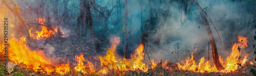 Fotografie, Obraz African forest fires in the Congo Basin ,Central Africa