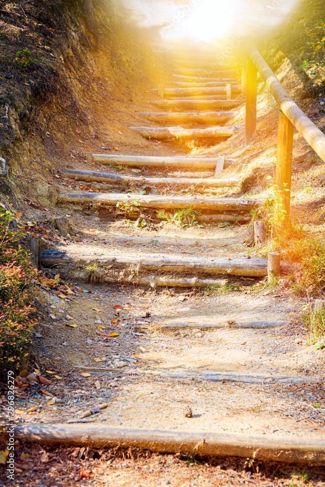 Idź w światło. Schody w parku jesień. Droga do nieba Schody na niebie. Religia dla osoby. Podłoże religijne . Droga do sukcesu <span>plik: #296826279   autor: yaalan</span>