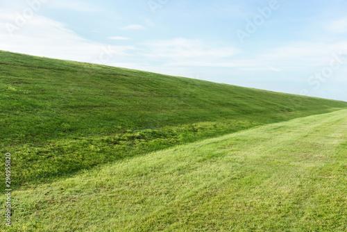 Leinwand Poster Frisch gemähtes Gras auf dem Deich