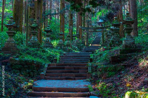 Photo shrine in the forest, Aso, Kumamoto