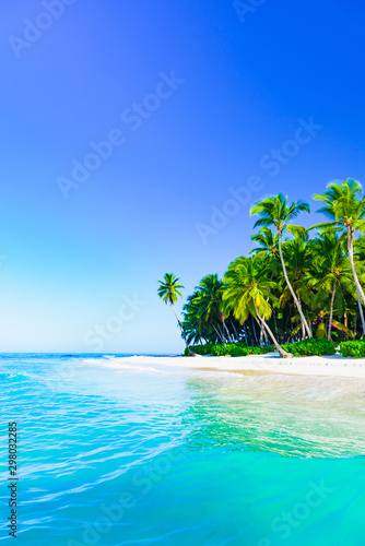 beautiful caribbean landscape with palm tree on the beach Wall mural