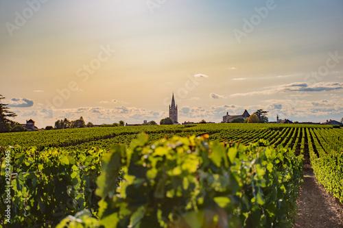 Fotografie, Tablou Le vignoble de Saint Emilion en automne
