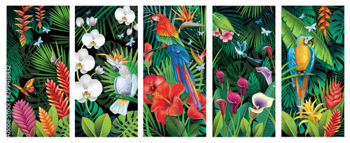 Set of Backgrounds with tropical jungle plants and birds