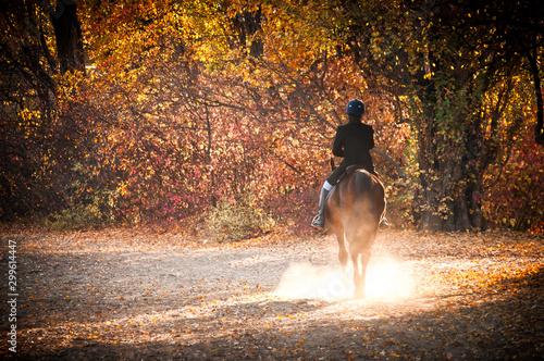 A Women Riding Horse In A Field On A Beautiful Autumn Morning Fototapet