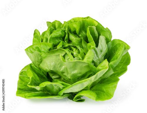 Photo green butter lettuce