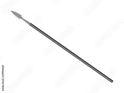 Obraz na płótnie Battle spear