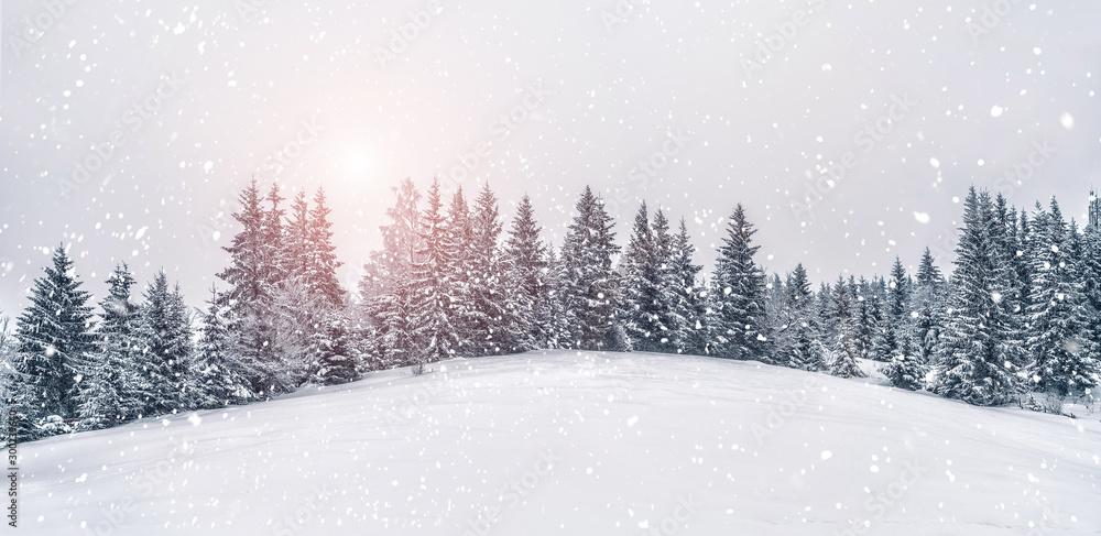 Piękny zmierzch przy zim gór krajobrazem. Żywe białe świerki w śnieżny dzień. Alpejski ośrodek narciarski. Zimowe kartkę z życzeniami. Szczęśliwego Nowego Roku <span>plik: #300239640   autor: Jukov studio</span>