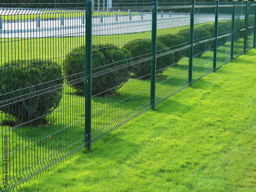 neat fence and shrubs near the parking in the city Fototapet