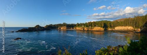 Fotografia Panoramic view of the Whale Cove Habitat Refuge on the Oregon coast