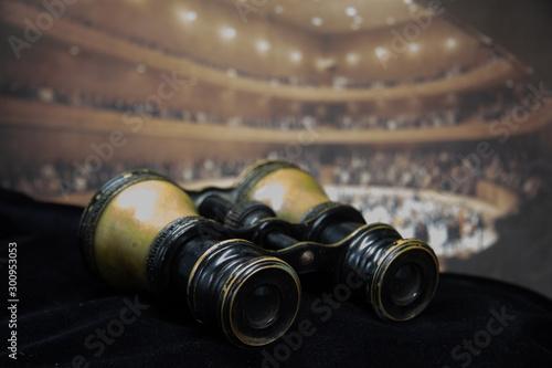 Fototapeta Antique Opera Glasses