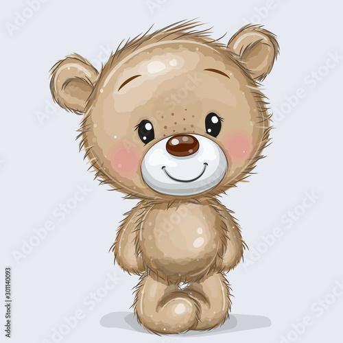 Cartoon Teddy Bear isolated on a white background