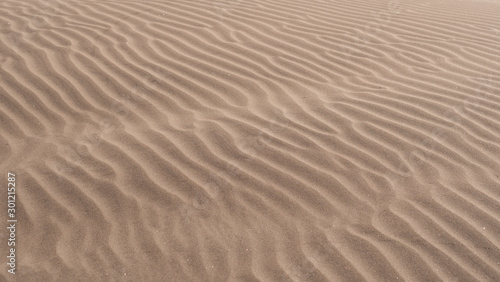 Obraz na płótnie ripples in the sand of a dune in the desert