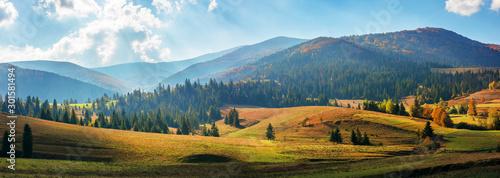 Fotografie, Tablou rural area of carpathian mountains in autumn