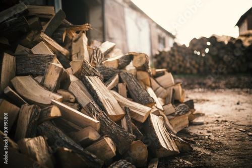 Obraz na plátne Pile of firewood on a heap