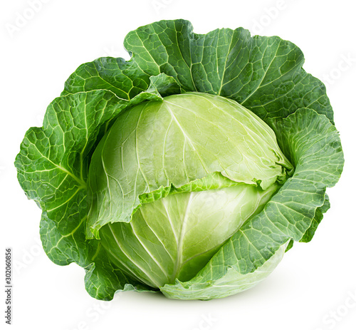 Cuadros en Lienzo cabbage isolated on white background, clipping path, full depth of field