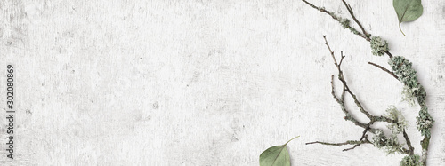 minimalist natural Scandinavian style winter banner with forest elements such as twigs, lichens, and dry leaves on a distressed white wooden background, flat lay / top view