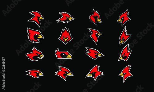 Fotografía set of cardinal bird logo icon design vector