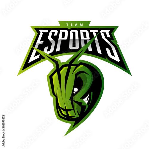Carta da parati Premium quality esports team mascot grasshopper vector logo isolated emblem