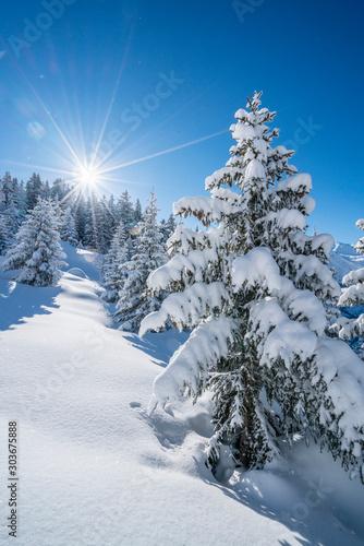Śnieżny zimowy krajobraz