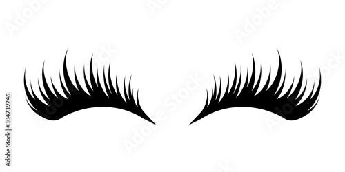 Canvas-taulu Eyelashes on white background
