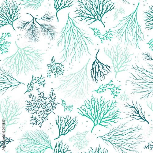 Beautiful Hand Drawn corals seamless pattern, underwater background, great for t Fototapeta