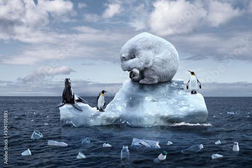 Foto polar bear sits on a melting glacier