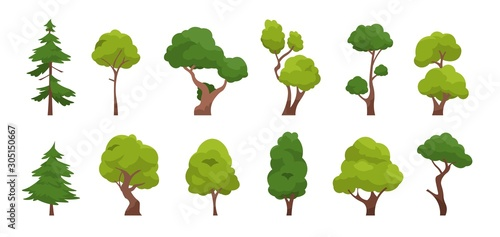 Cartoon tree. Simple flat forest flora, coniferous and deciduous meadow trees, oak pine Christmas tree isolated plants. Vector set illustration agricultural garden and nature park plant