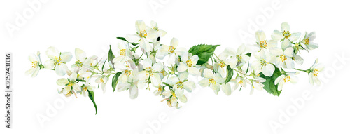Photo Watercolor composition of jasmine flowers