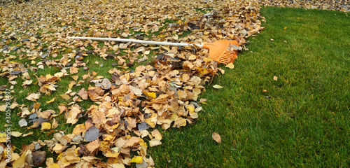 Photo Pile of fall leaves with fan rake on lawn