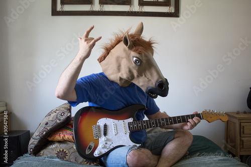 Wallpaper Mural guitarrista caballo