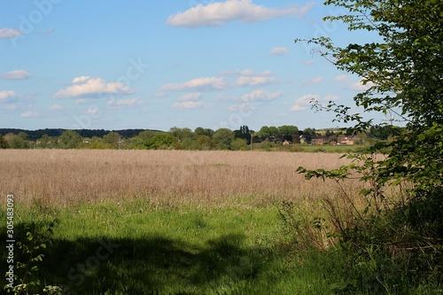 Obraz na płótnie a beautiful spring day in the rural Suffolk countryside England