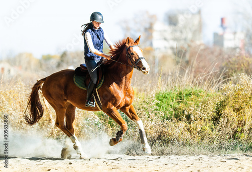 Fotografija Young pretty girl riding a horse in autumn