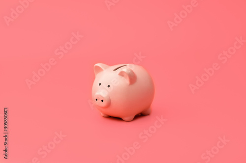 Fotografija Pink piggy Bank stands in the center on a pink background