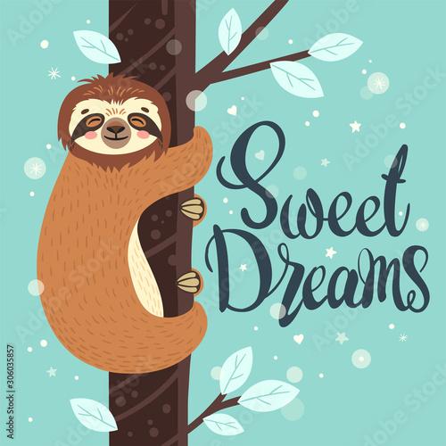 Photo Sleeping sloth on the branch