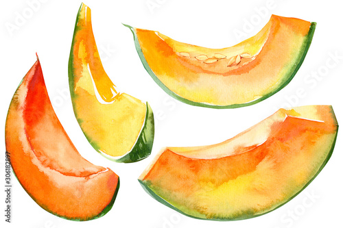 Canvas Print pumpkin slices vegetables on isolated white background, watercolor illustration