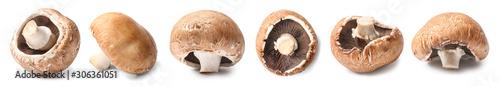 Fotografia Fresh champignon mushroom on white background