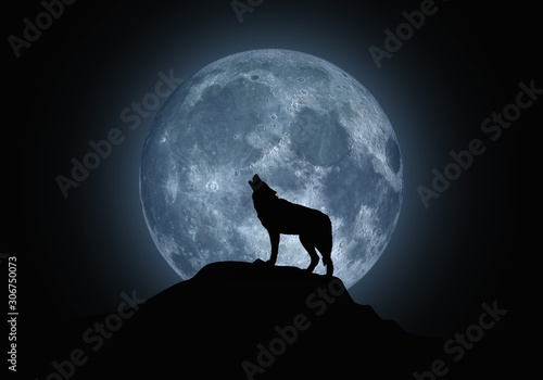 Canvas Print Silhouette of a howling wolf on a background of the full moon