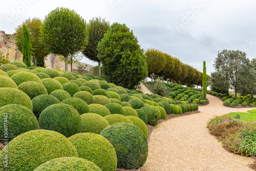 Fotografia Beatuiful Landscaped garden with boxwood balls near Chateau d'Amboise in Loire v