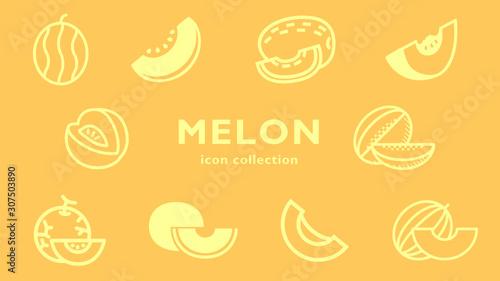 Photo melon icon collection (vector fruits)